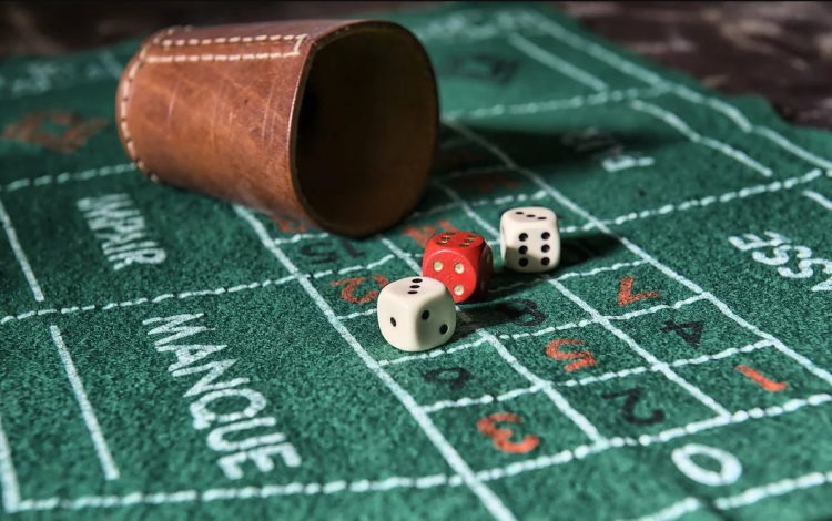 Craps forum allows any gambler to choose the best game strategy